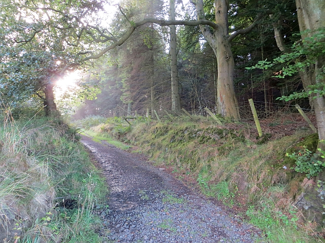 Path, Beecraigs