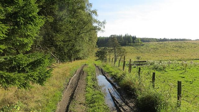 Farm track, Aberdona