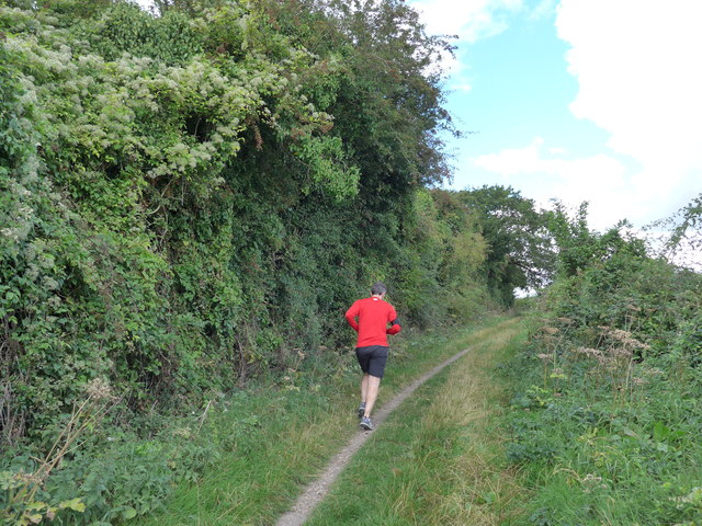 South Downs Way, Winchester to Exton (70)