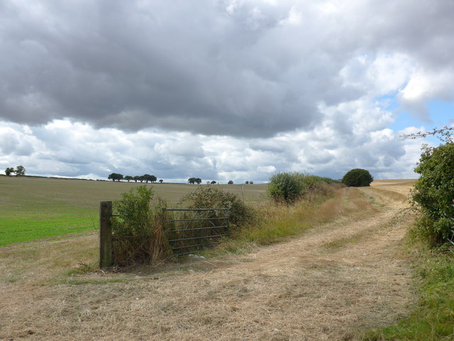 South Downs Way, Winchester to Exton (71)