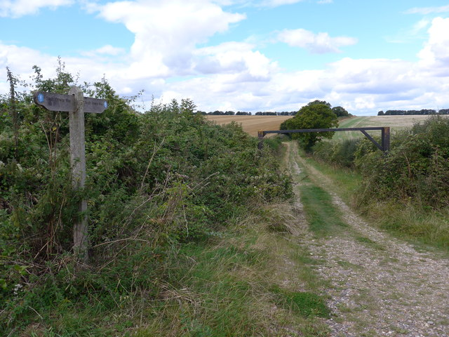 South Downs Way, Winchester to Exton (72)