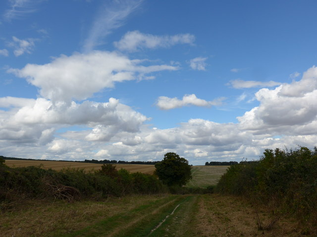 South Downs Way, Winchester to Exton (76a)