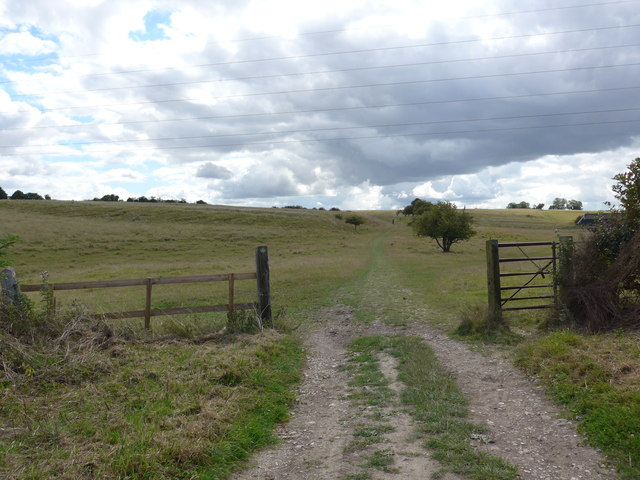 South Downs Way, Winchester to Exton (79)