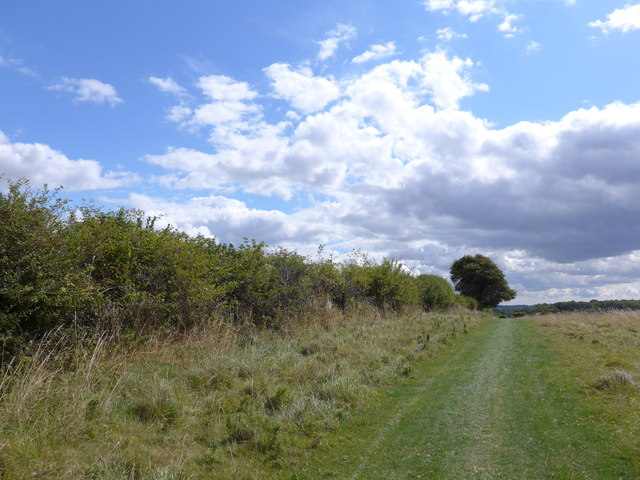 South Downs Way, Winchester to Exton (85)