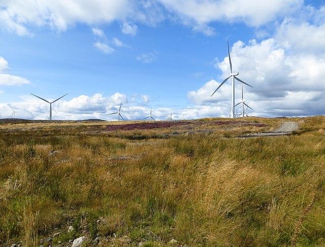 Griffin wind farm