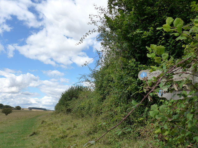 South Downs Way, Winchester to Exton (88)