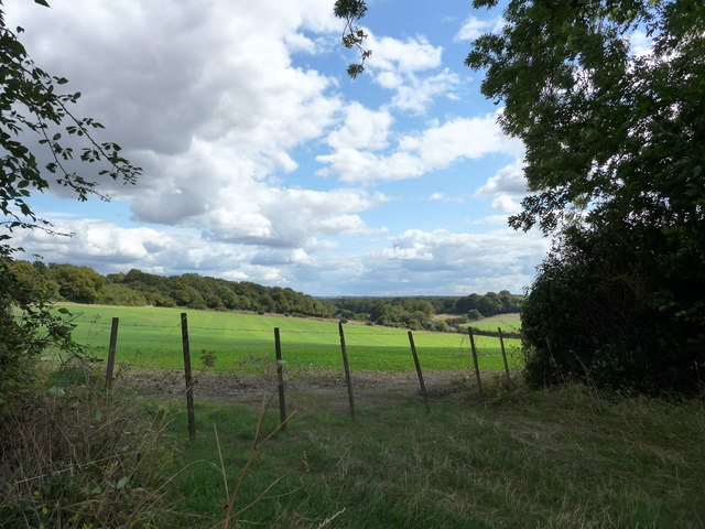 South Downs Way, Winchester to Exton (93)