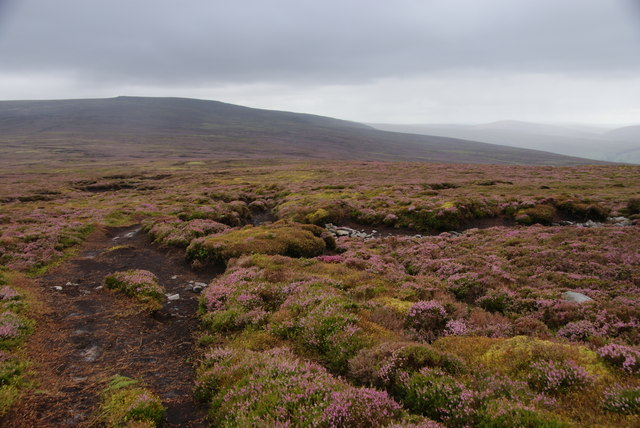 Moorland view from Grit Fell