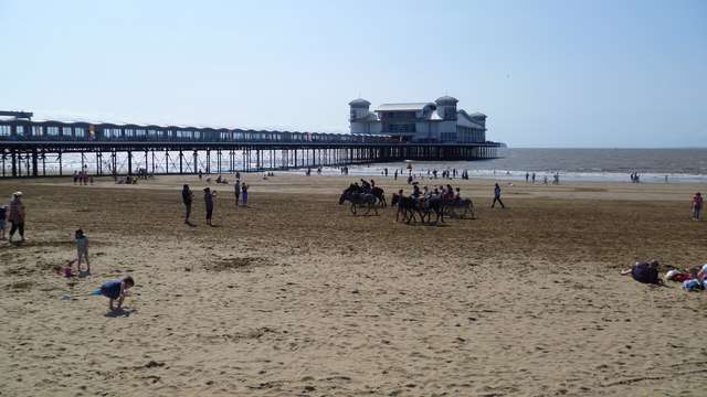 Donkeys on the sands at Weston-super-Mare in August