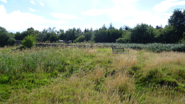 The old grandstand on Oswestry Racecourse Common in August