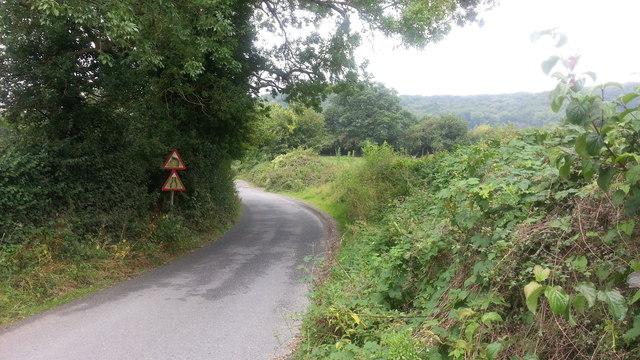 Birchwood Lane at Merryhill Common