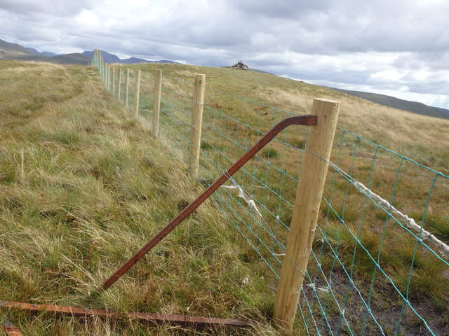 Old Post, New fence