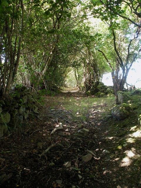 Hollow way