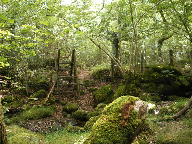 Coed Gorswen National Nature Reserve