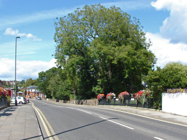Long Bridge, Farnham