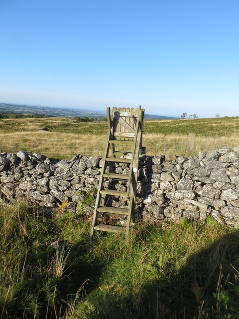 Gated Ladder Stile