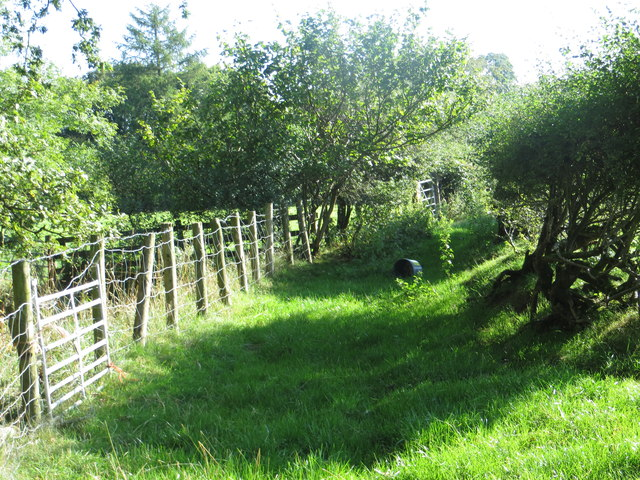 Disused and overgrown bridleway near Badger Gate