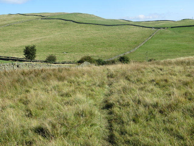 Bridleway with Warth Hill in the distance