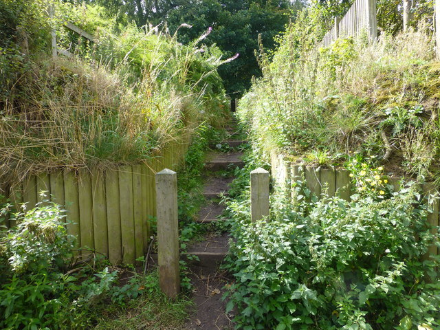 Steps from Keckwick Lane leading to Daresbury Firs