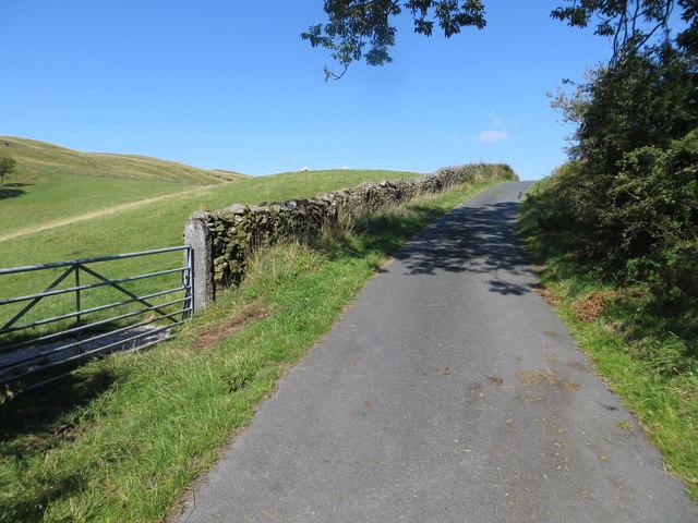 Lane near Tarnhouse Tarn