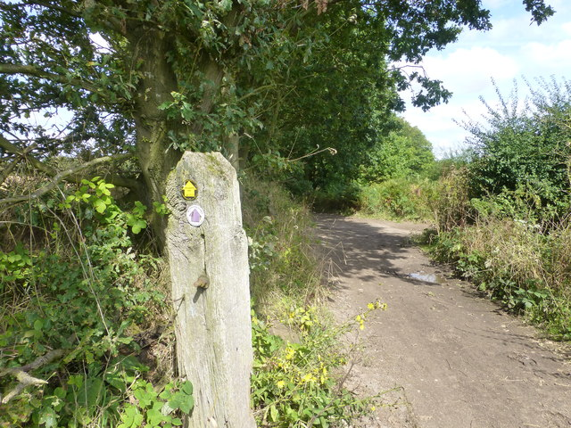 Delamere way marker post near Hurst Farm