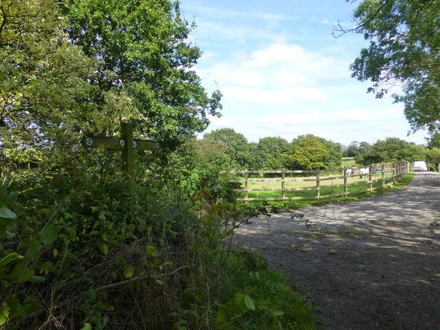 Signpost on Delamere Way near Bellfield Farm