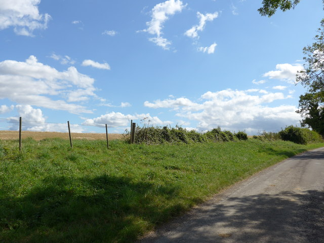 South Downs Way, Winchester to Exton (110)