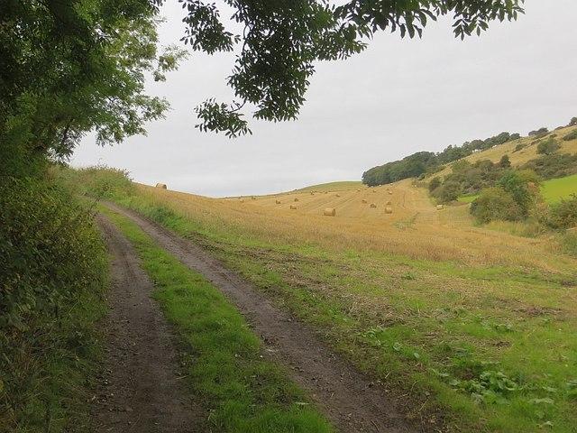 Road to Dunbog