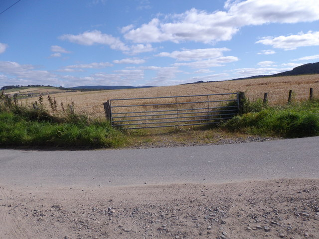 Gated entrance to a field of barley
