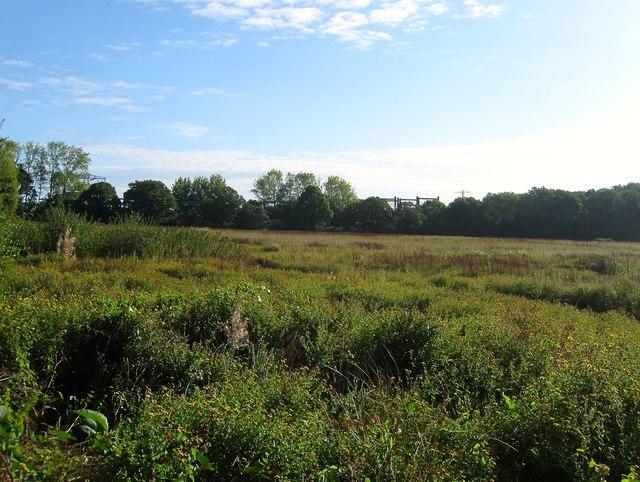 The Ham/Eight Acre Bob Field