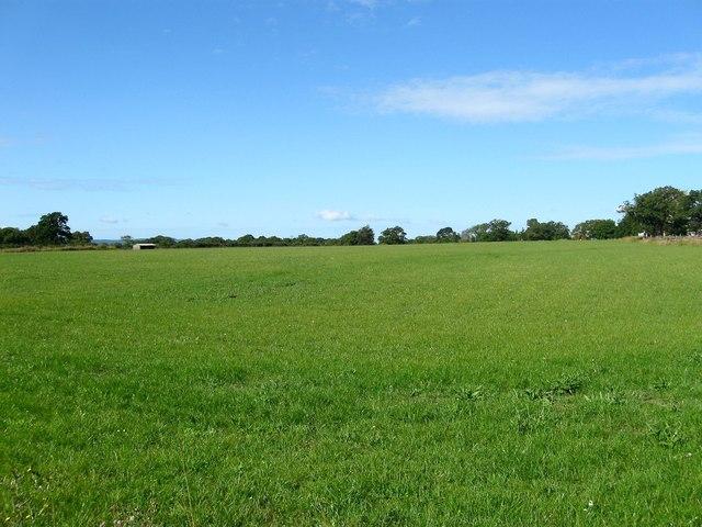 Ten Acres/House Field