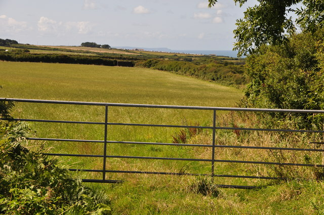 North Devon : Grassy Field & Gate