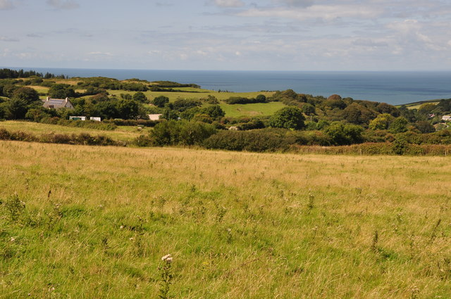 North Devon : Grassy Field