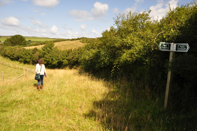 North Devon : Grassy Field & Path