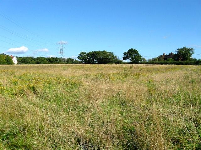 Souters Field