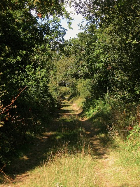 Old Drive to Twineham Grange