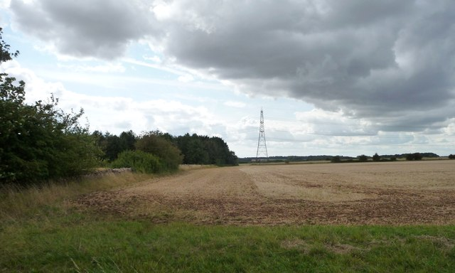 Pylon north of Broughtondowns Plantation