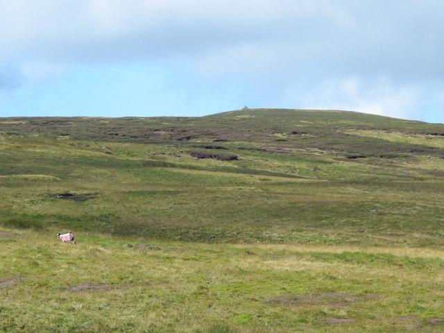 Round Hill below Killhope Law