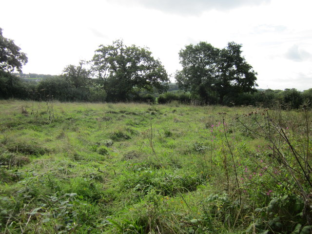 Footpath to Millmoor Farm