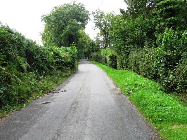 Wilderness Lane