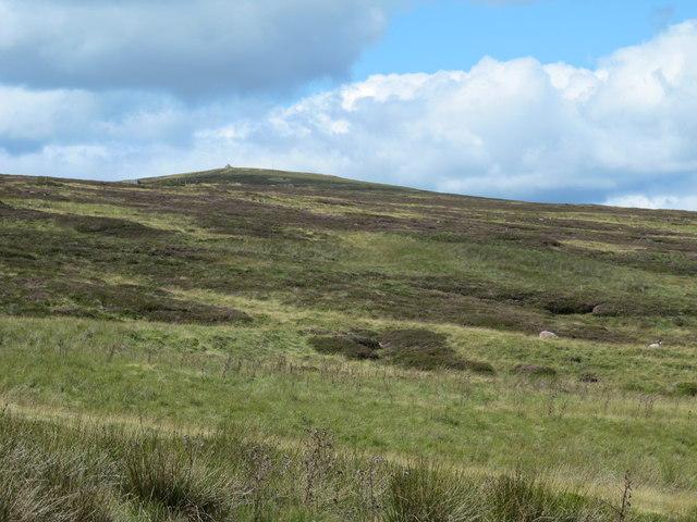 The eastern slopes of Killhope Law