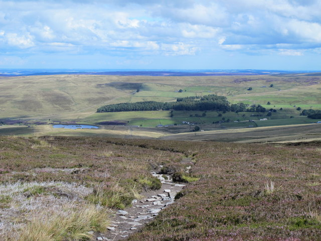 Path on Middlehope Moor