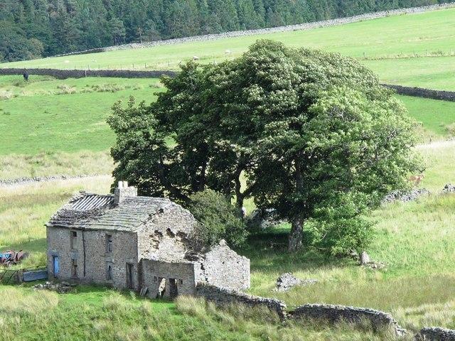 Ruined farmhouse above Blackcleugh Burn (11)
