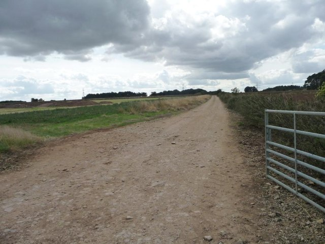 Track running west from Downs Farm