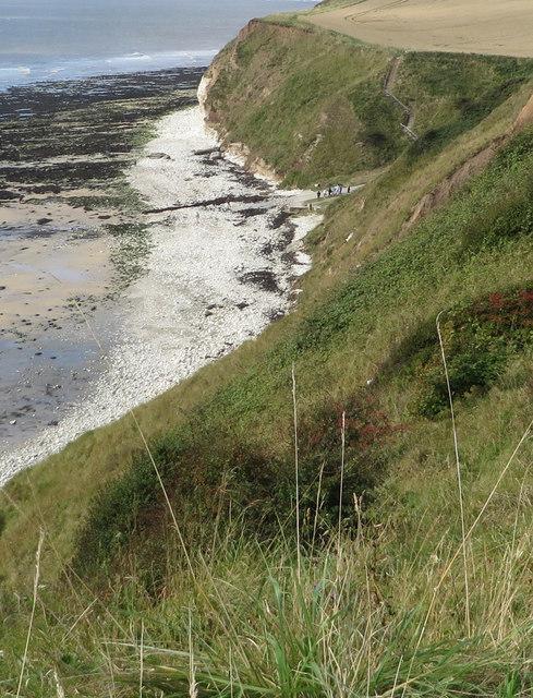 Chalk pebble beach at South Landing
