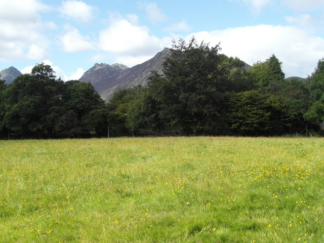 Meadow and mountains at Sannox