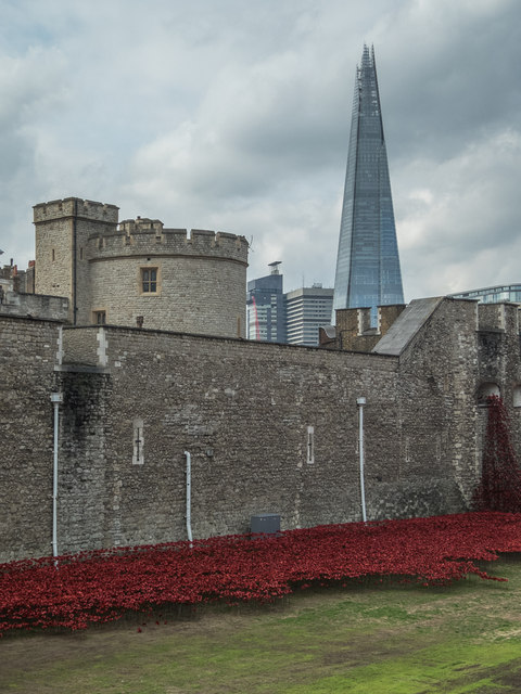 Poppies in the Moat, Tower of London, E1