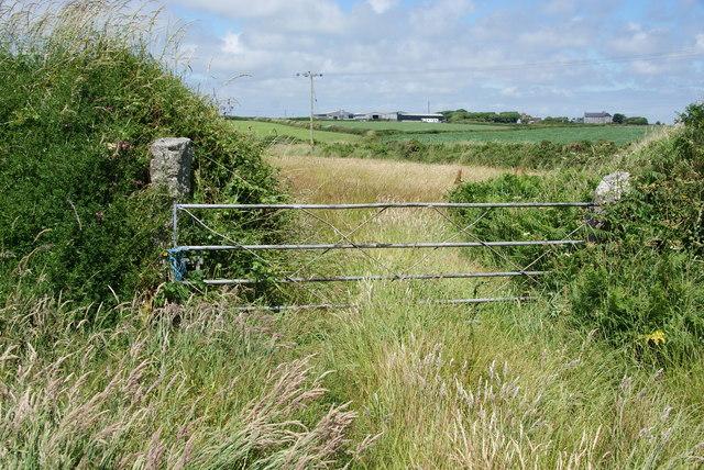 Farm gateway near Lizard