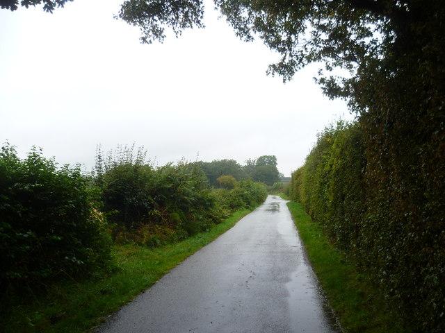 Playden Lane