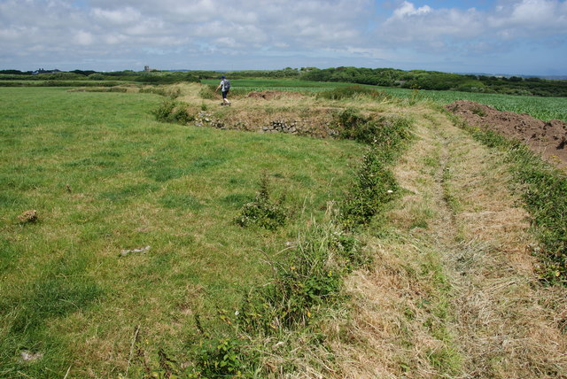 Raised pathway between Trethvas and Gwavas Farms